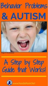 Addressing Behavior Problems for Students with Autism- A Step by Step Guide that Works from NoodleNook.Net