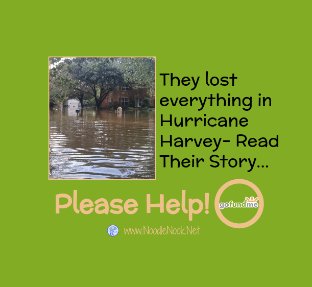 Ayo and her Boys- Hurricane Harvey-Help