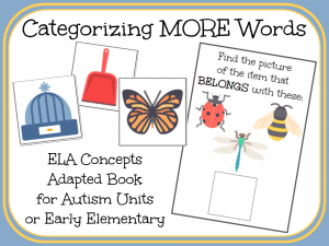 Categorizing MORE Words- An Adapted Book
