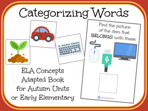 Categorizing Words- An Adapted Book