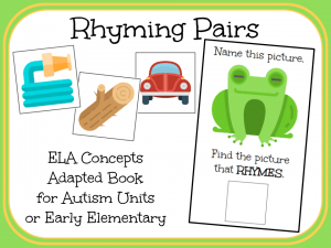 Rhyming Pairs- An Adapted Book